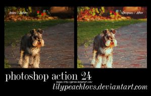 Action dog 24 by lilypeachlovs