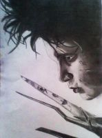 Edward Scissorhands by DanloS