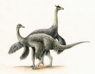 Anserimimus planinychus by FOSSIL1991