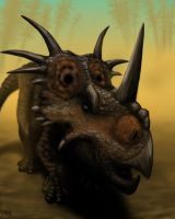 Styracosaurus by MicrocosmicEcology