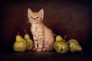 Still Life with Pears by zoldszorny