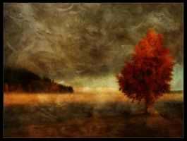 Inside the fall by Funerium
