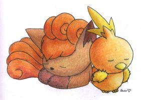 Vulpix and Torchic