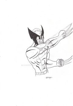 Wolverine Slash by lockwood-1