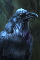 Raven sketch by Lunegrimm