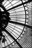 The palm house by George---Kirk