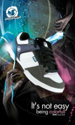 DVS Shoe Sonar 2010 by 10tacle
