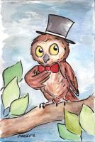 Fancy Owl by chrispco