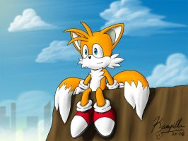 Tails - Sitting by Kampidh