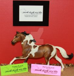 1stTime Showing-3rd Place Collectibility-5thHalter by Lovely-DreamCatcher