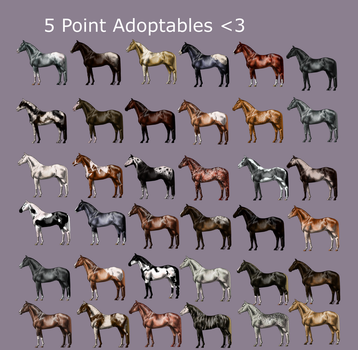 5 Point Horse Adoptables [27/36] by phsart