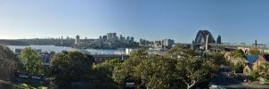 Panorama From Observatory Park by tawunap159