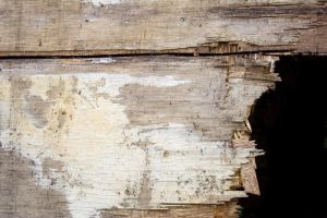 Wooden Texture 2 by stock-photo