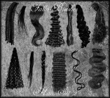 Hair Brushes Set 2 by Falln-Stock