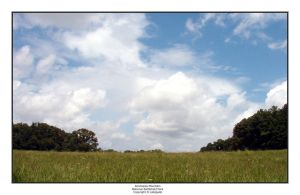 Kennesaw Mountain Park II by pdelgado