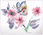 Red Admiral On Plum Blossom by GeaAusten