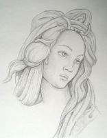 Botticelli Woman Head by roffa5