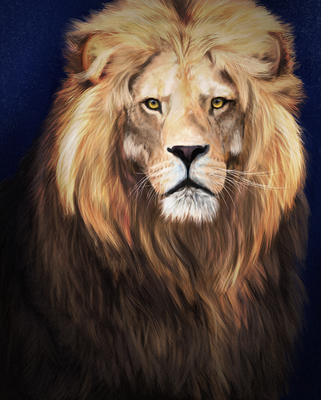 Lion by Chocomix