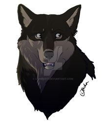 Roscoe Headshot by lioness17