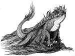 Dragon in black and white by Fl33tingshadoW