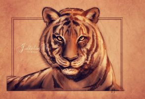 The Tiger by Jullelin