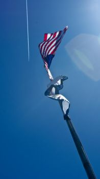 Run it up the flagpole by ASpencer2