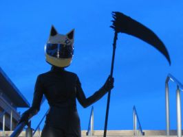Celty by shiroiyukiko