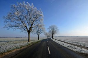 The Winter by augenweide