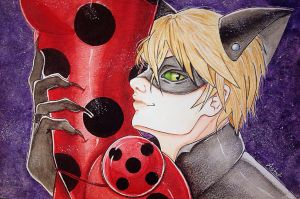 LadyBug and Chat Noir by Astat7