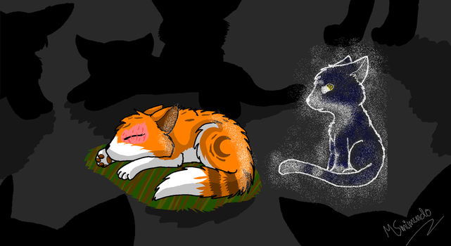Brightpaw And Swiftpaw