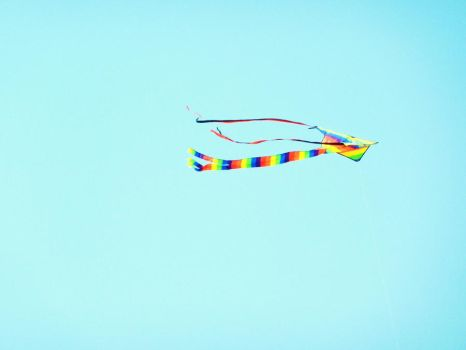 Colourful Kite by Toiger