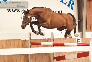 Freejumping Geyer 2014_91 by CalyHoney