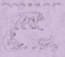 Amber Peace Werewolf Doodles by TeknicolorTiger