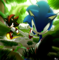 The Ultimate Lifeform vs Shadow by Myly14