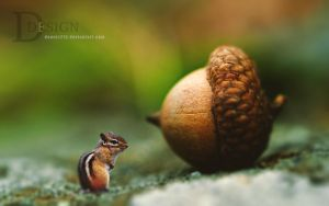 Mini Chipmunk and Chestnut by dannis214