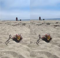 Stereograph - Surfboard by alanbecker