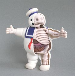 Stay Puft Anatomy Sculpt by freeny