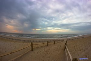 Beach Fisheye by robmurdock