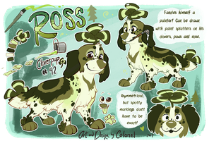 Ross ref by Colonels-Corner