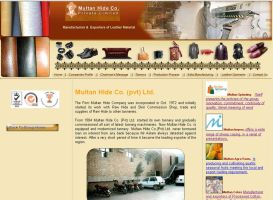 multan hide company by zamir