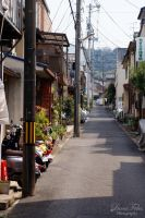 streets of Kyoto 8 by LunaFeles