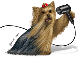 Yorkshire Terrier - Commission by ceres86