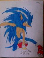 2013 drawing - Sonic by nielopena