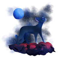 young skywatcher by kittycatpatpat