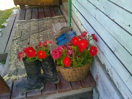 Granny's flowers in boots by msFiBi