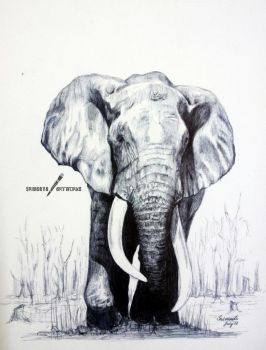 Mighty Elephant - Ballpoint Pen by srimant