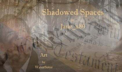 NCIS Reverse Bang Art for Shadowed Spaces 2/2 by WaterSoter