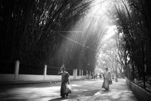 A street in India. by kosmobil