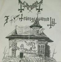 Drawing by Per Yngve Ohlin I Love Transylvania by lilg9