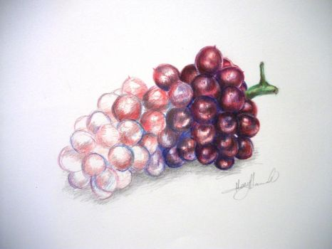 Grapes WIP by miamary123456